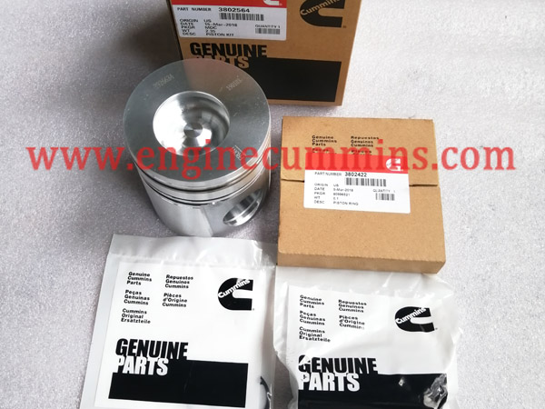 Cummins 3802564 B Series Engine Piston Kit