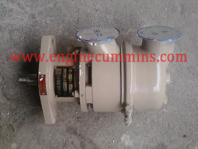 الكمون 3900415 B Series Sea Water Pump
