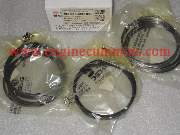 Cummins 4089644 6C Engine Piston Ring Set