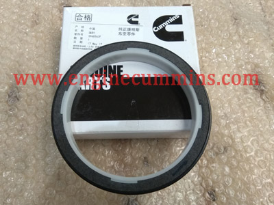 Cummins Bfcec 3968563 Oil Seal